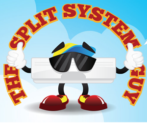 The Split System Guy Review
